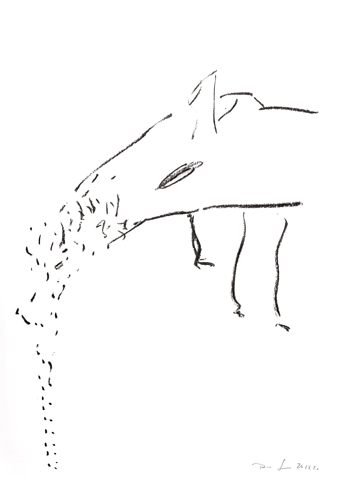 Thomas Sing Plenitudes Charcoal Drawings